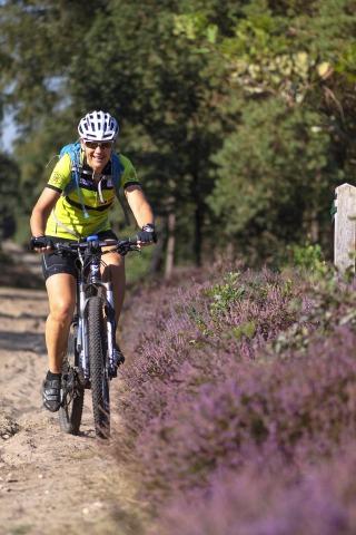 De 8 mooiste routes om te mountainbiken in Salland