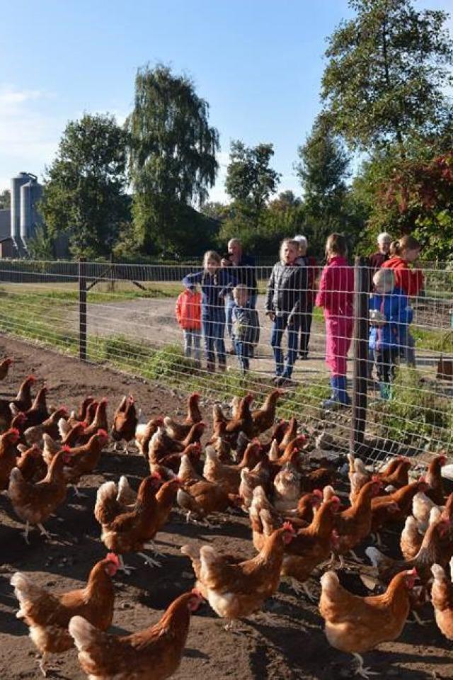 Salland Boert en Eet Bewust: verbinding tussen boeren, tuinders en samenleving