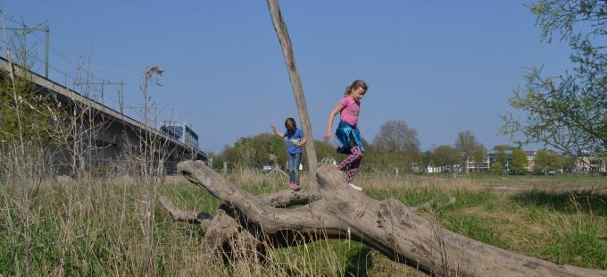Woeste Willem - natuurspeeltuin op De Worp