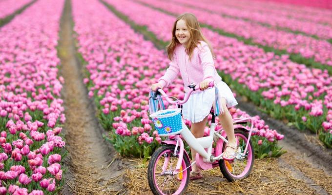 Fiets door het grote kleurrijke palet van de Tulpenroute