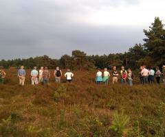 Wandeling 'Struinen over de heide' Dal van de Mosbeek