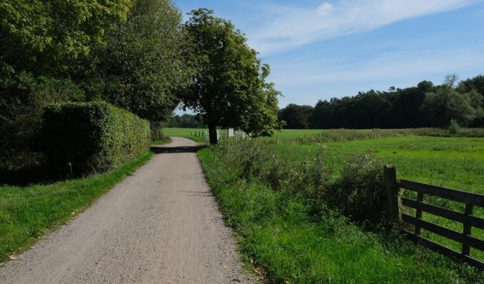 Wandelen in een 'bergachtig' Nederland.