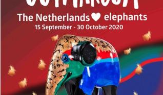 Elephant Tour Autoroute 70 km