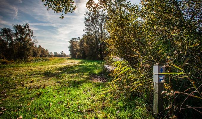 Verhalen & tips over Herfst