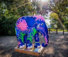 Pianovoorstelling 'Babar, de kleine olifant'