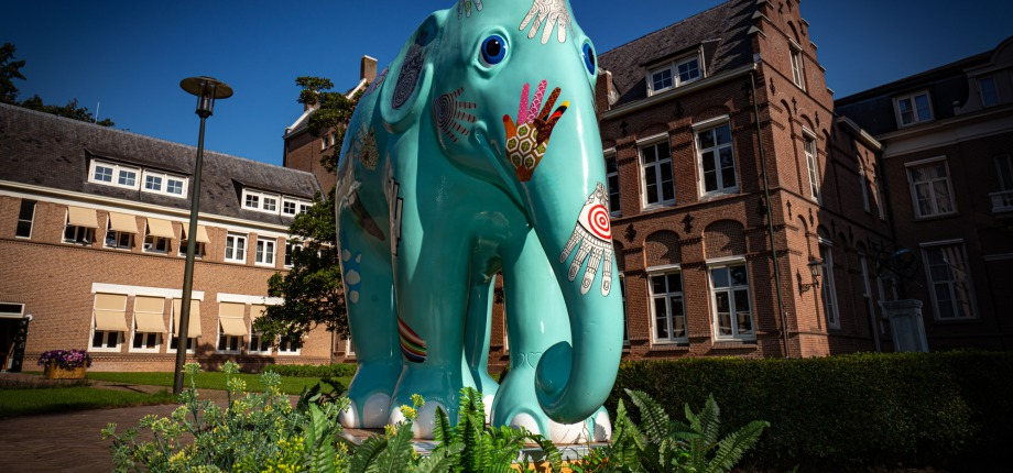olifant bij het Klooster Franciscanessen