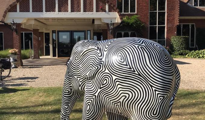 Op de fiets olifanten in Twente spotten