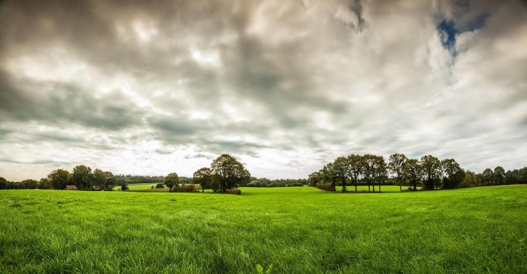 Glooiend landschap Steenwijk