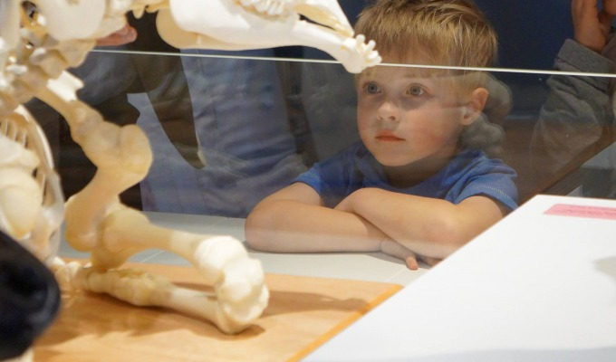 Natura Docet Wonderryck Twente kindvriendelijkste museum van Overijssel