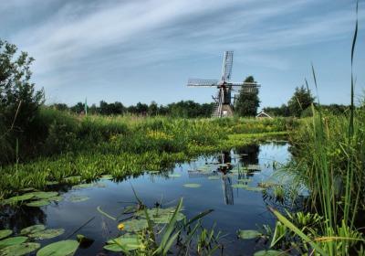 Weerribben-Wieden voorgedragen als Nationaal Park van Wereldklasse