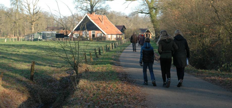 Wandelen in Hof van Twente: Midwinterwandeling Delden