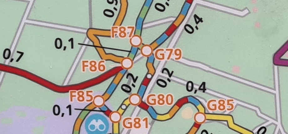 Voorbeeld routenetwerk kleurtjes