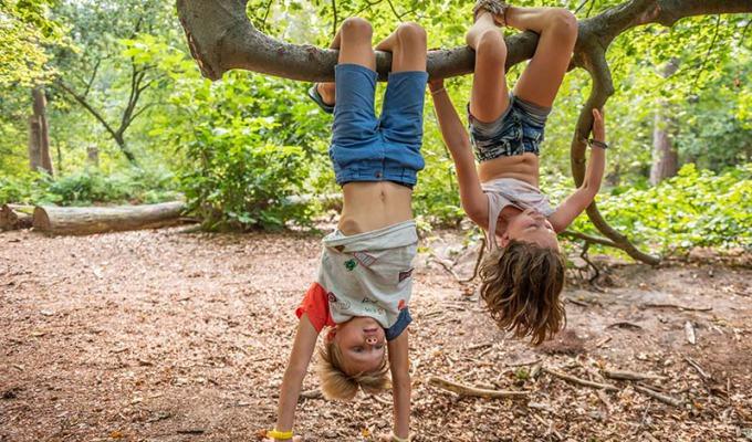 Zes tips voor avontuur in het Grintenbosch