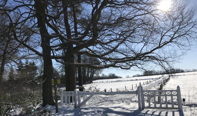 Winterwandeling omgeving De Lutte