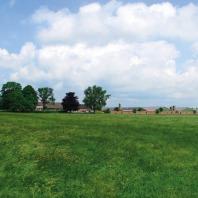 Scharrelkippenboerderij Van den Heuvel