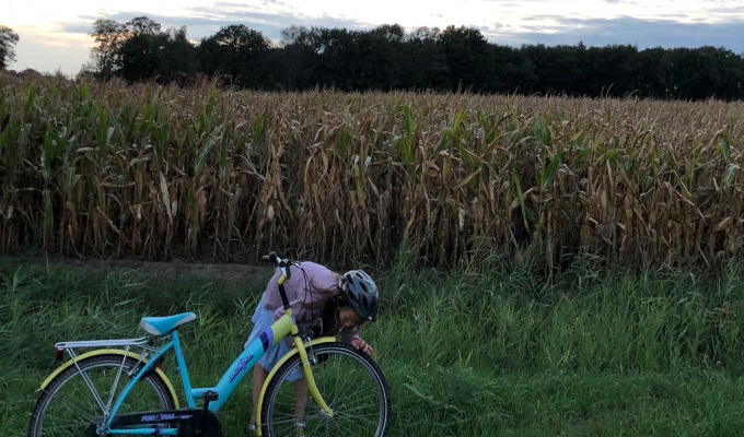 Von Guten Eltern: Wir Unterwegs mit den fahrrad in Ostholland