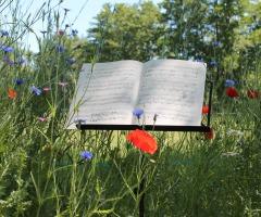 Concert: Landgoed Westerflier