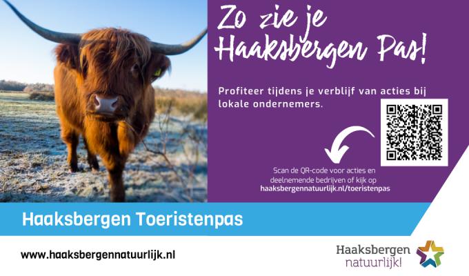 Zo zie je Haaksbergen Pas!
