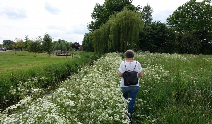 Langs de Regge door Goor; een historische wandeling langs de Regge.