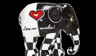 Love Sees no Colour