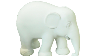 Elephant by Shireen Eyer