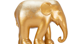 Golden Elephant Bloemenbeek
