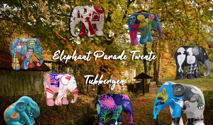 Welke olifanten zijn straks te bezichtigen in Tubbergen?