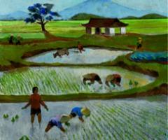 Vietnam: Het gedroomde paradijs