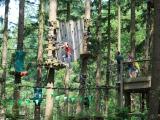 Avatarz Nature Park: Kletterwald voller spannender Hindernisse
