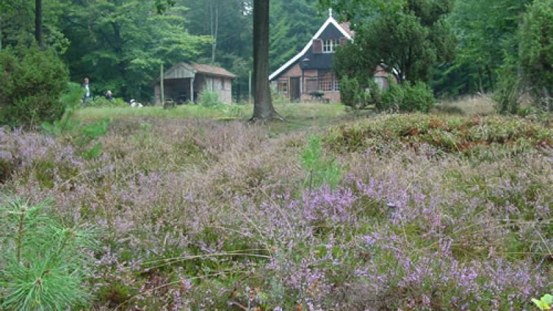 Saksische Landhuis De Spreng