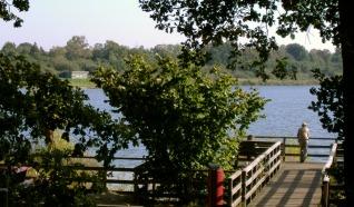Natuurgebied Oerlemans