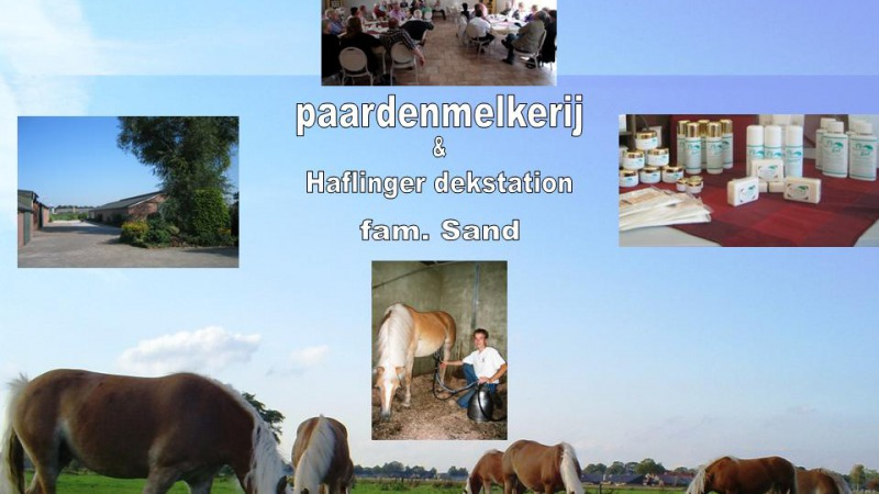 Paardenmelkerij Sand Harbrinkhoek