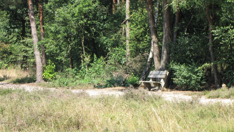 Het  Zandstuvebos