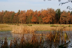 Natuurgebied Duivelshof