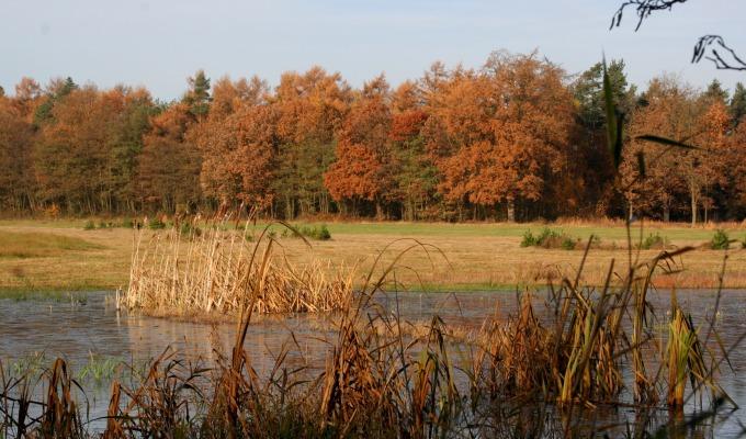 Natuurgebied Duivelshof engelachtig mooi volgens FietsActief
