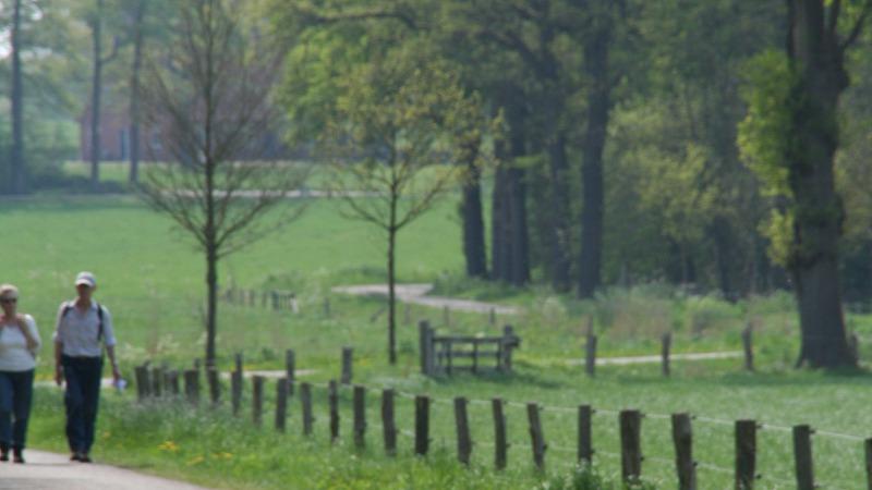 Afbeeldingsresultaat voor Natuurgebied Hakenberg