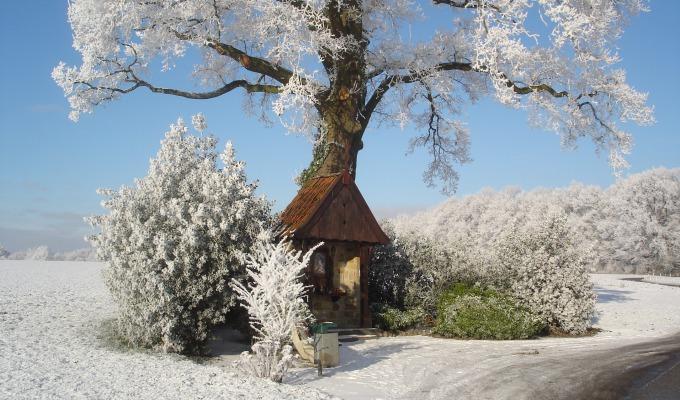 De nieuwe winterkalender!