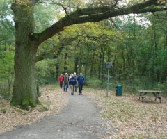 Die Thijronde durch Het Hulsbeek
