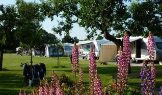 Ferienhäuser und Mini-Camping De Veldzijde