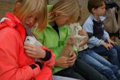 Kinderboerderij Dondertman