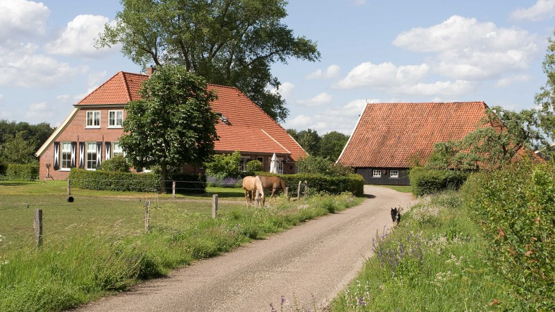 Gastenboerderij De Ziel