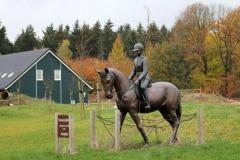 Horsetellerie Rheezerveen