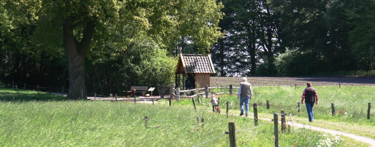 Wandelen in Hof van Twente