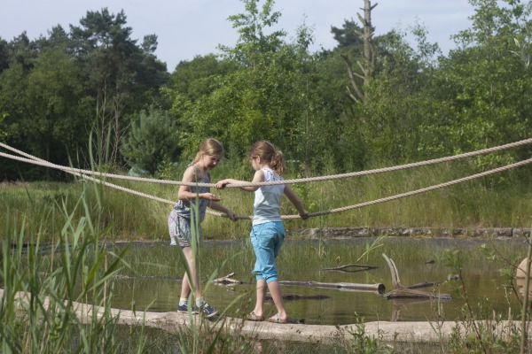 Natuurcamping De Lemeler Esch Vechtdal Overijssel
