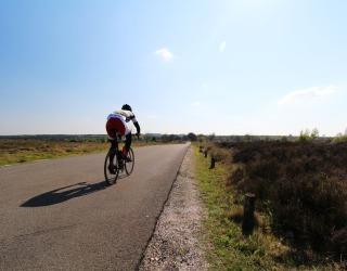 ATB routes Sallandse Heuvelrug