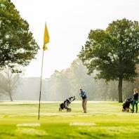 Golfclub Driene