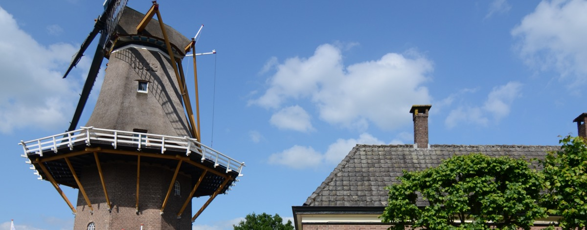 Anjerpunt Hoonhorst