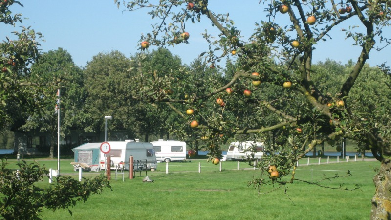 Camping 't Grasbroek