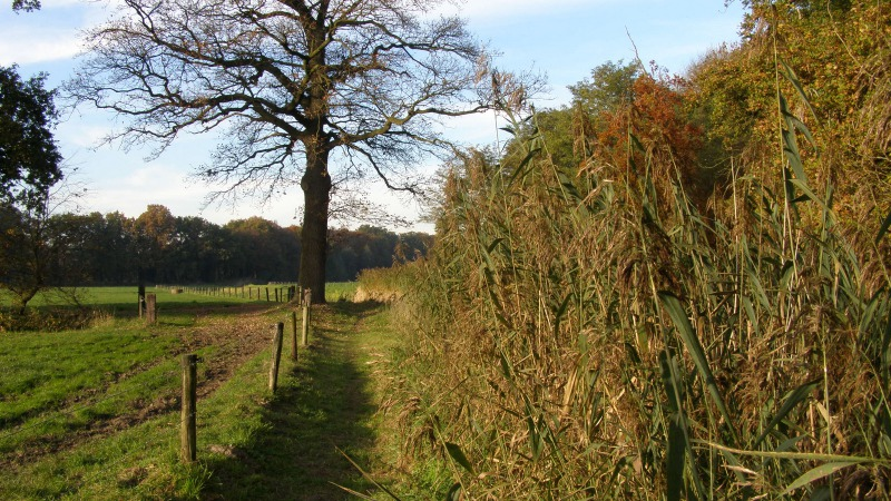 Wandelroute Stroom Esch (Oranje Route)