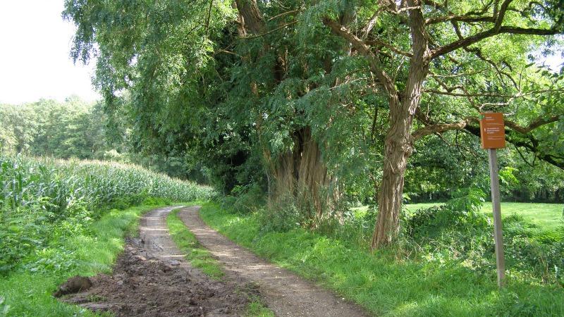 Wandelroute Stroom Esch (Rode Route)